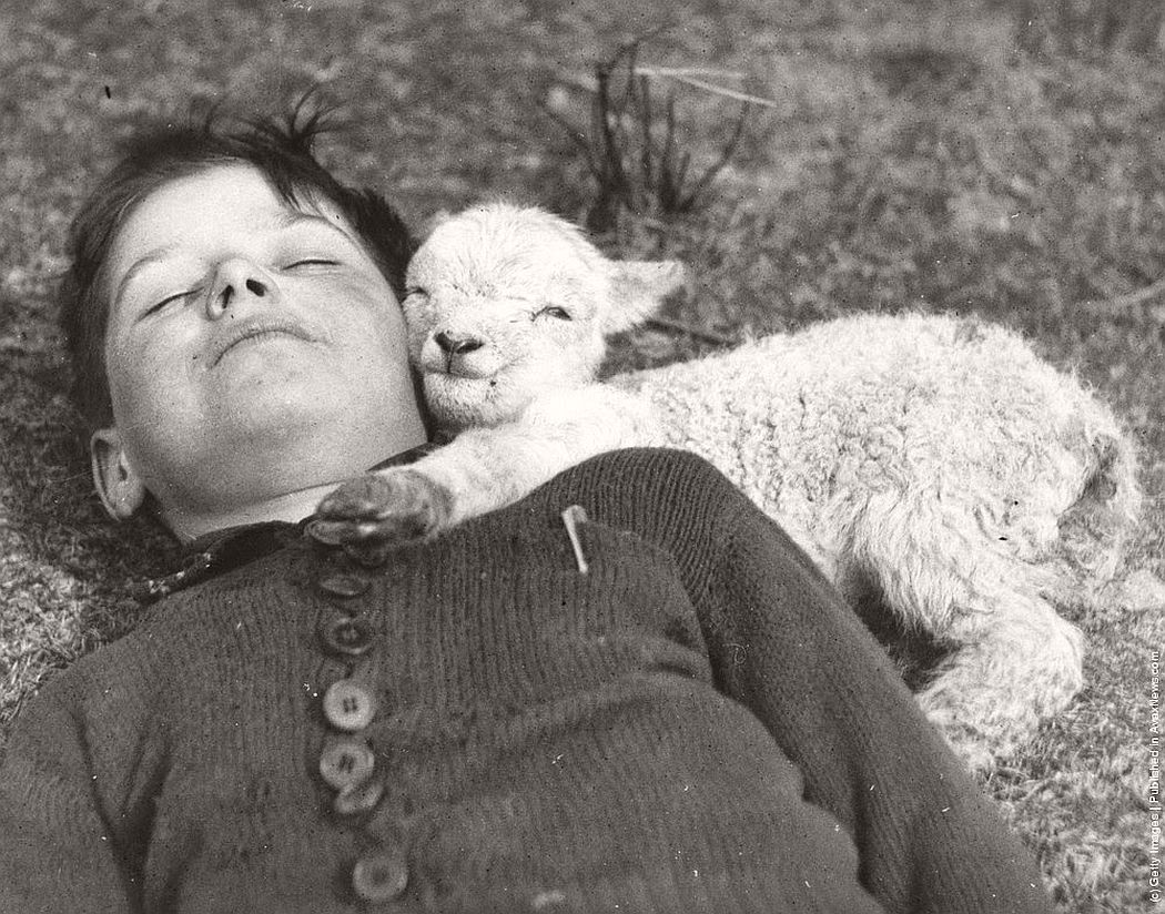 vintage-people-with-baby-animals-1930s-1960s-03