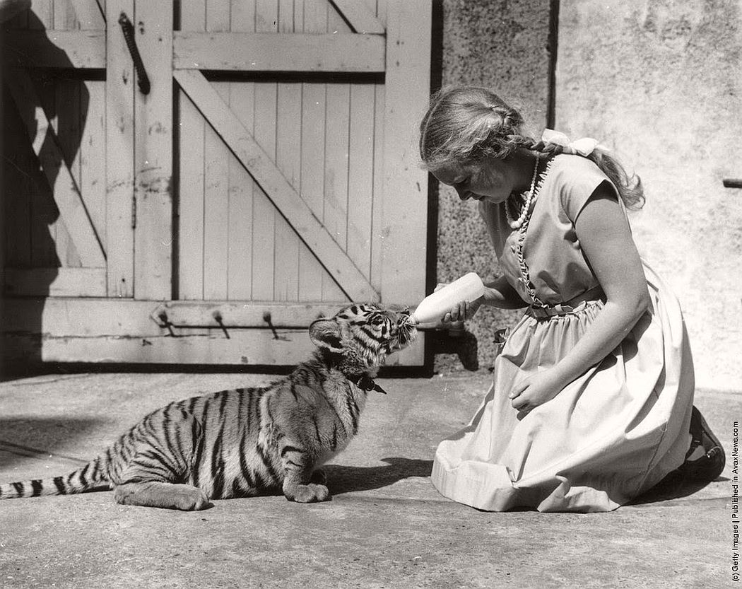 vintage-people-with-baby-animals-1930s-1960s-07