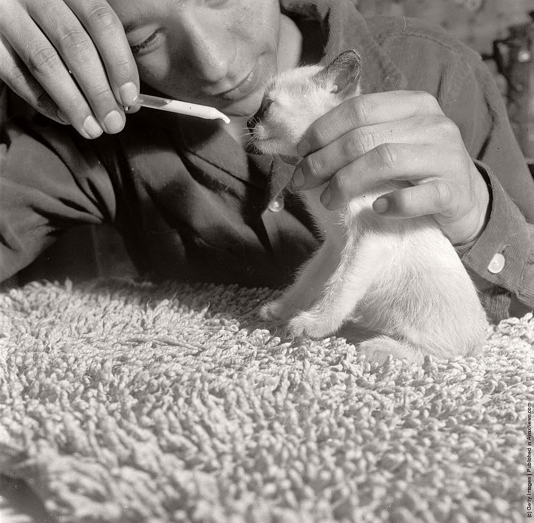 vintage-people-with-baby-animals-1930s-1960s-13