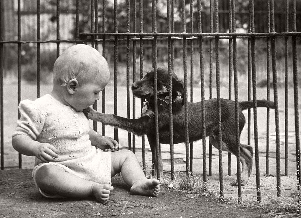 vintage-people-with-baby-animals-1930s-1960s-15