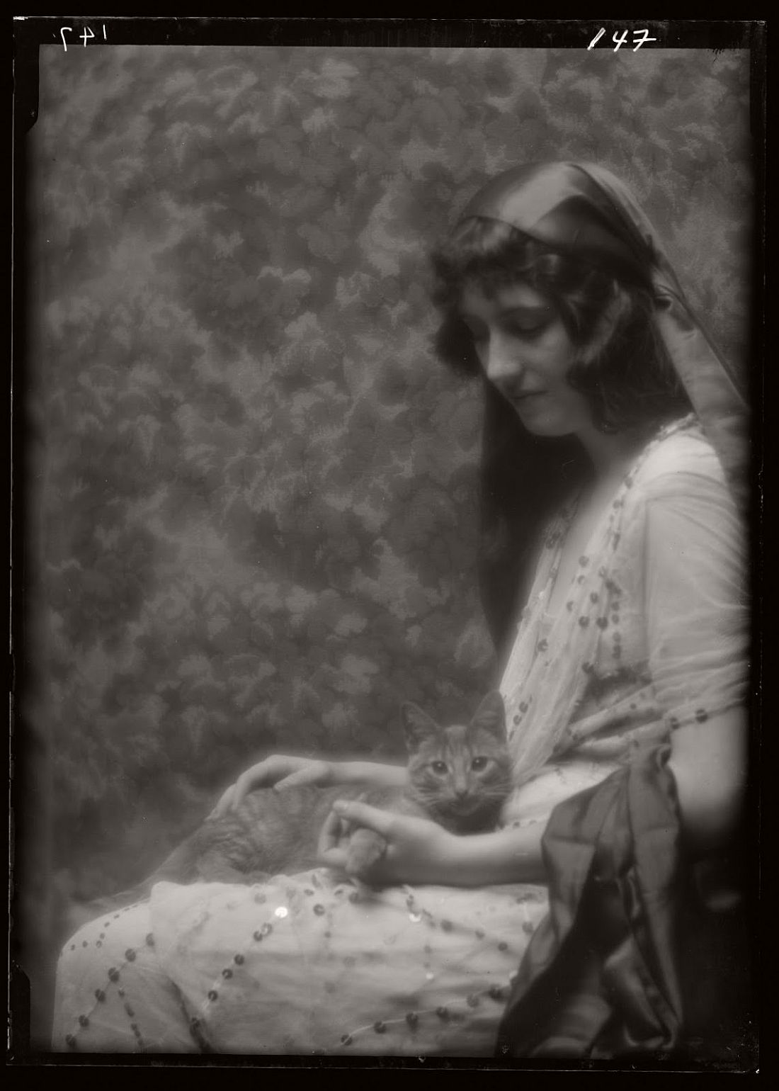 arnold-genthe-1910s-vintage-studio-portraits-of-girls-with-cat-08