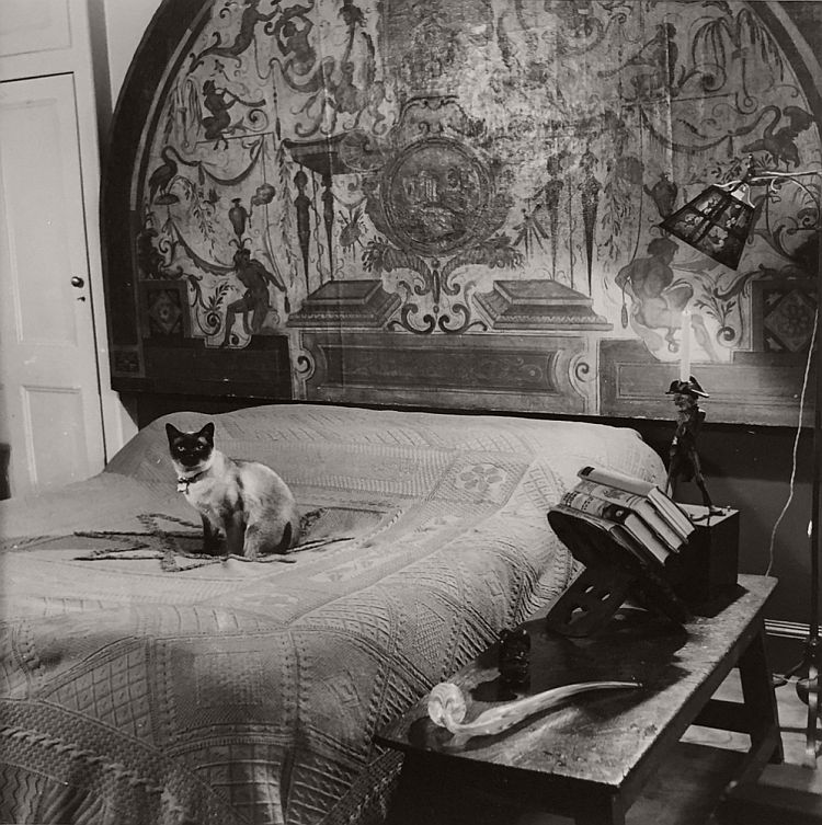vintage-cats-of-london-by-thurston-hopkins-1950s-05