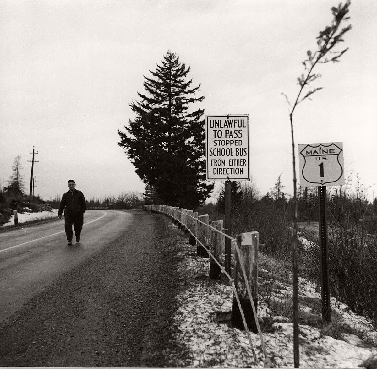 Roadsign, Route 1, Maine, 1954 by Berenice Abbott