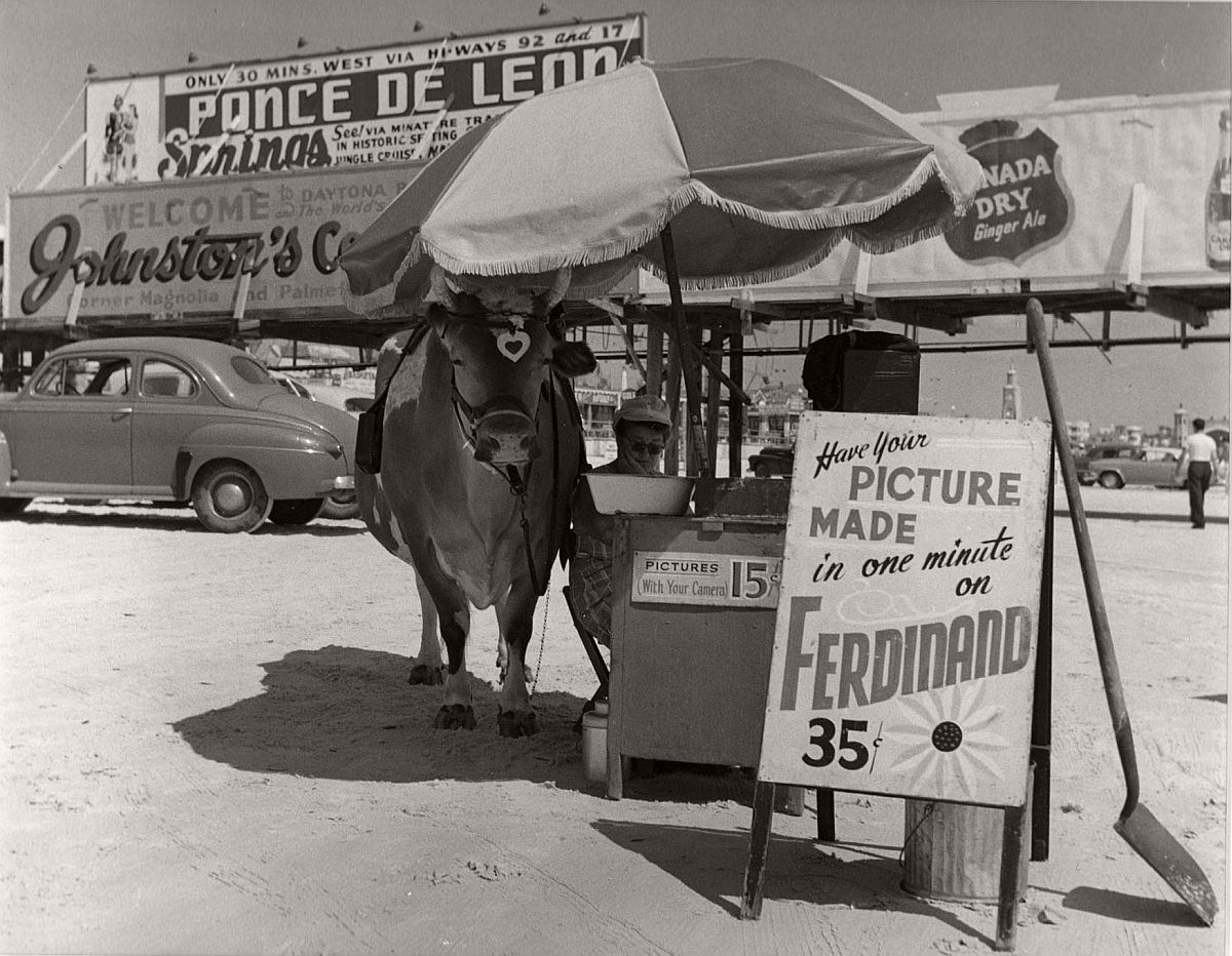 """Have your picture made on Ferdinand"", Florida, 1954 by Berenice Abbott"
