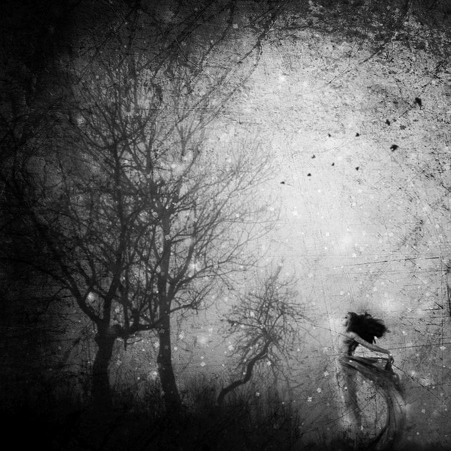 © Carmelita Iezzi