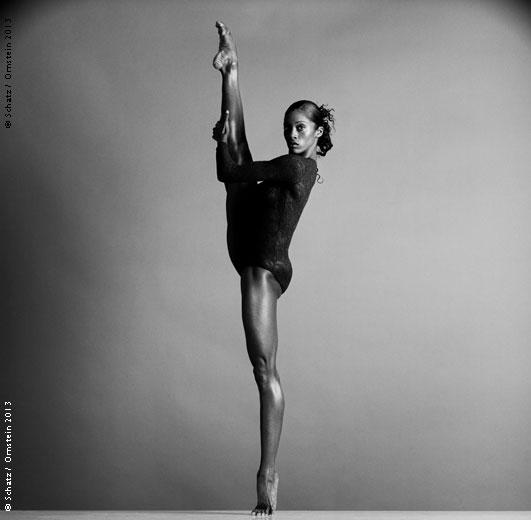 Howard Schatz © Schatz images: 25 years
