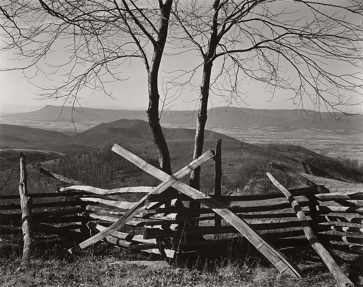 Edward Weston, 