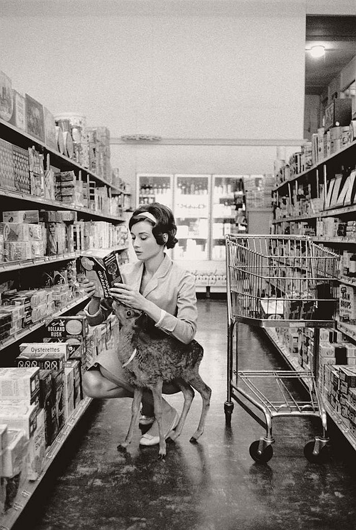 Audrey Hepburn with fawn Pippin