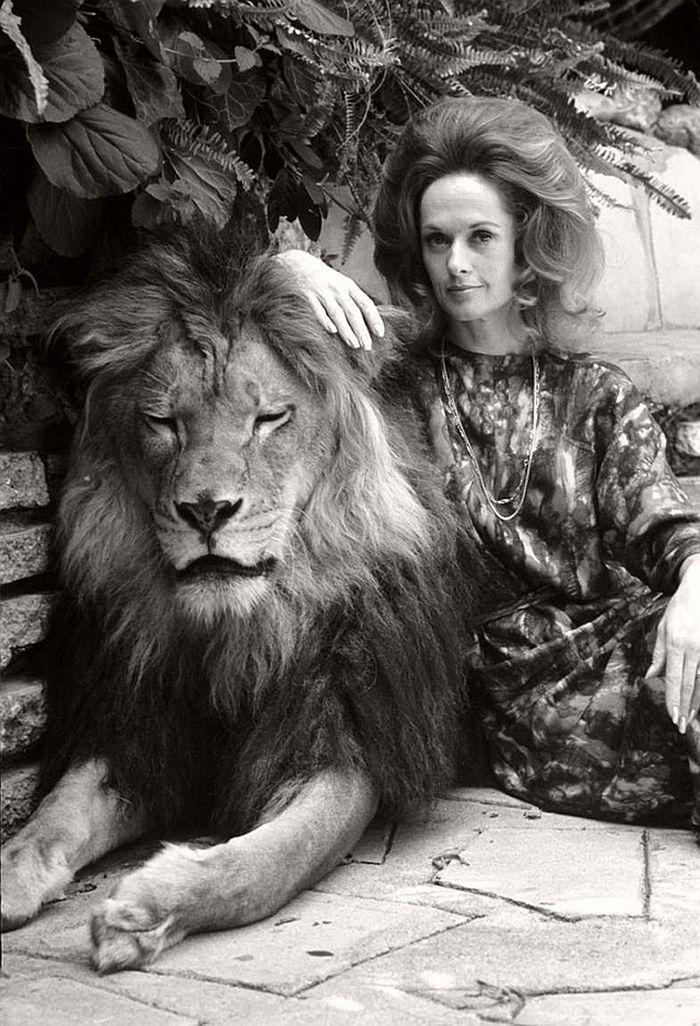 Tippi Hedren with lion Neil