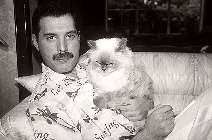 Freddie Mercury with one of his cats