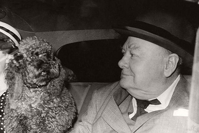 Winston Churchill with Rufus