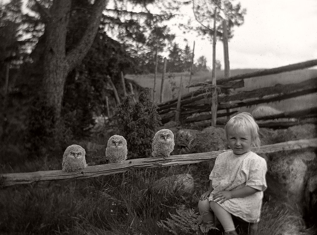 Little girl and three owls, 1925.