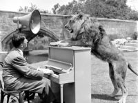 Vintage: Hollywood Lion – Fearless Fagan in 1951