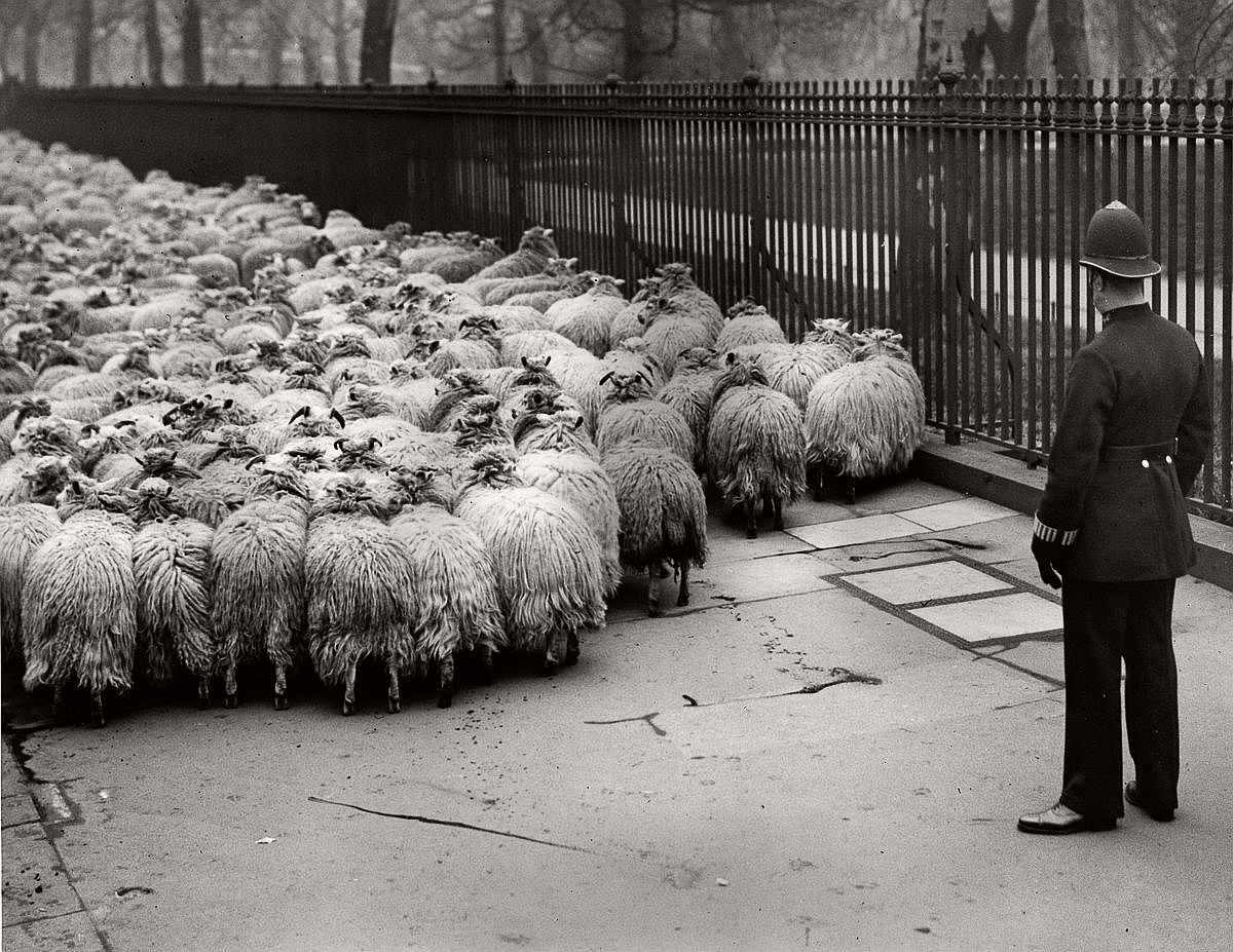 1931  Image: Fox Photos/Getty Images