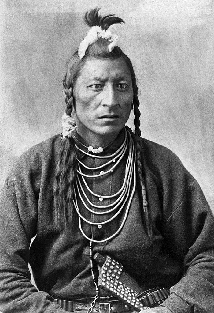 Chief owl of the Blackfoot, 1886