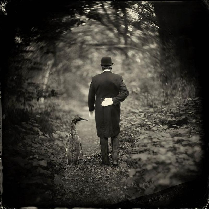 Alex Timmermans, Twins