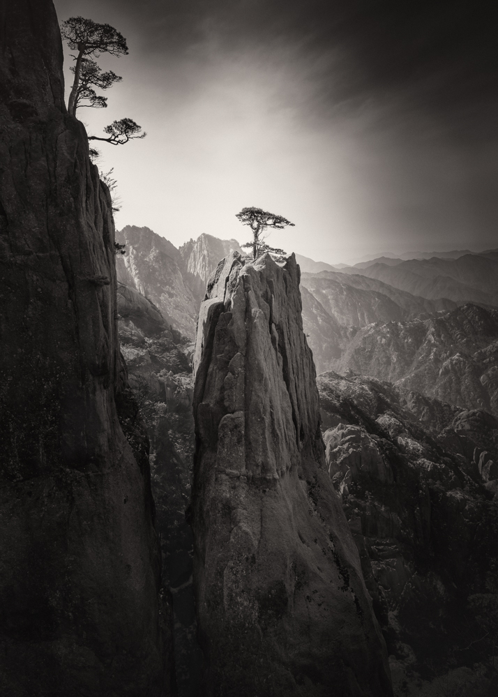 Nature 3RD PLACE WINNER (professional) 3RD PLACE WINNER Werner Elmer, Homage to Huangshan