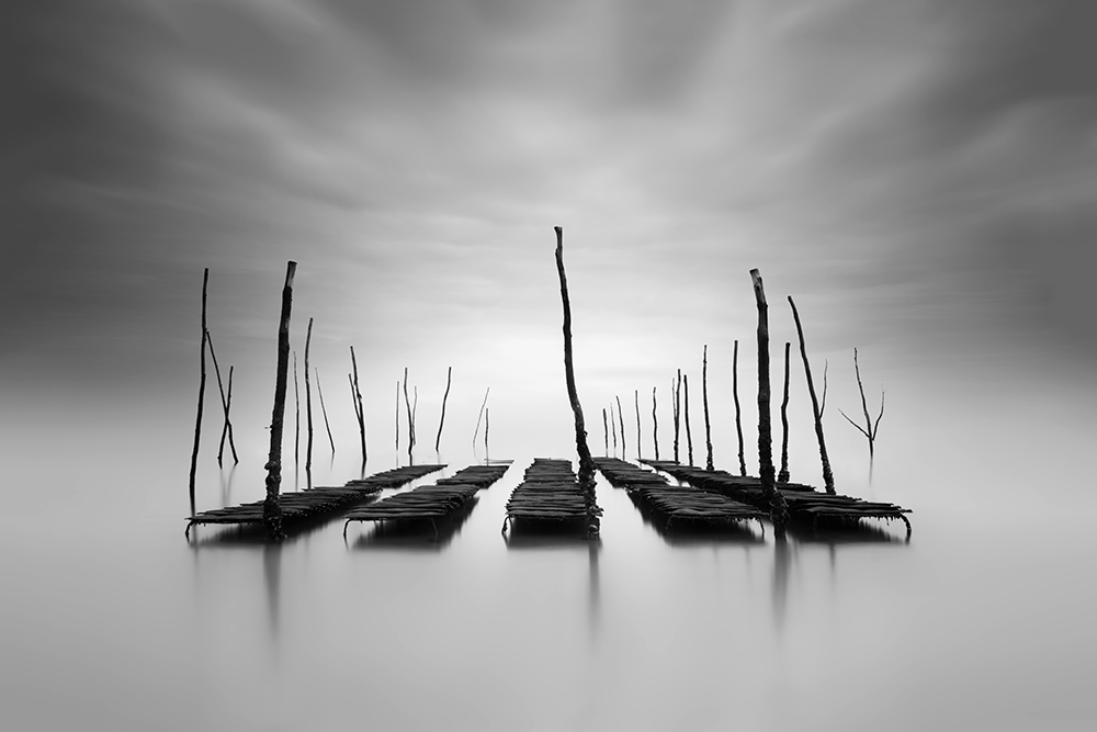 Seascape 2ND PLACE WINNER (amateur) 2ND PLACE WINNER Raul Podadera Sanz, Submerged World