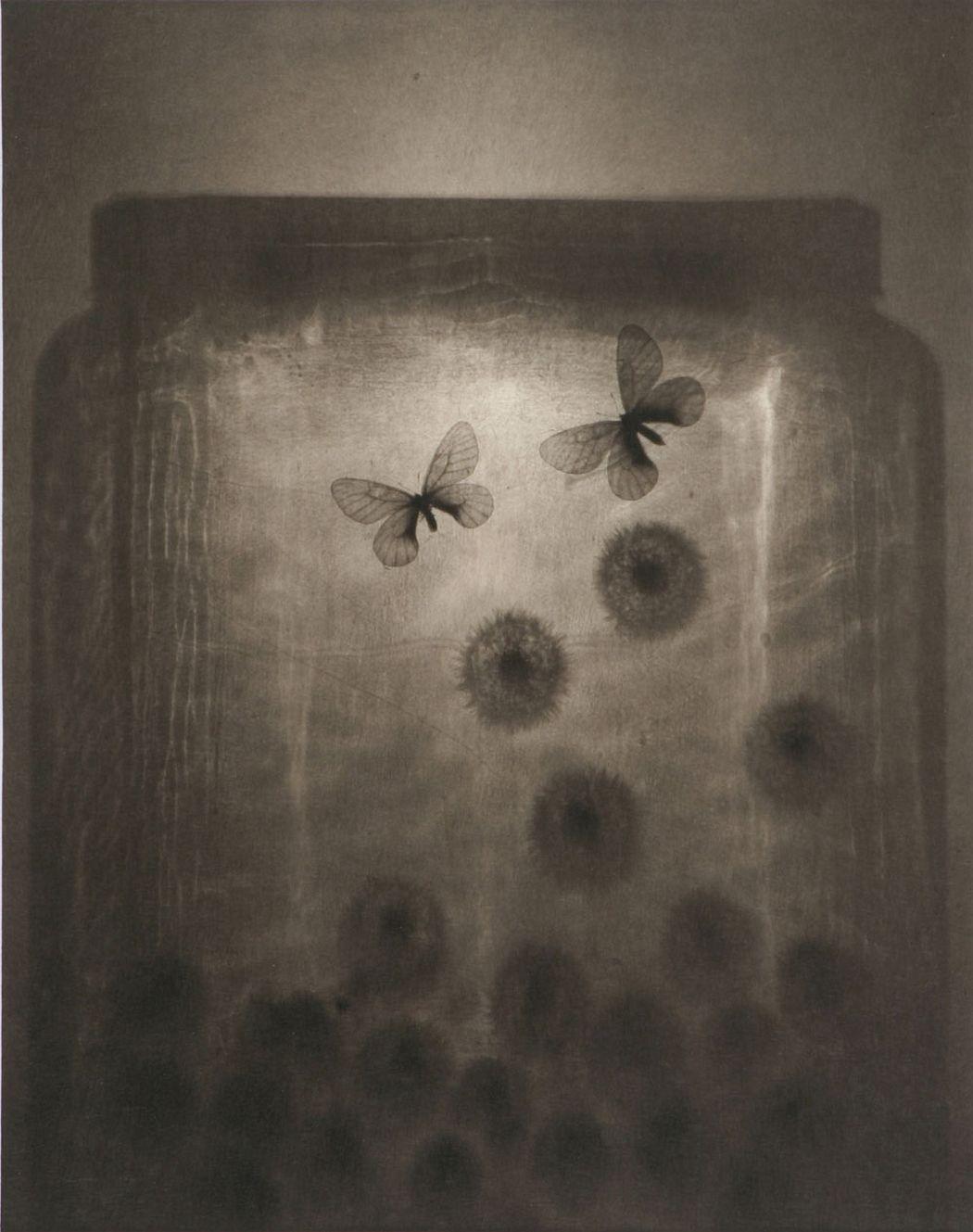 © Ryuji Taira