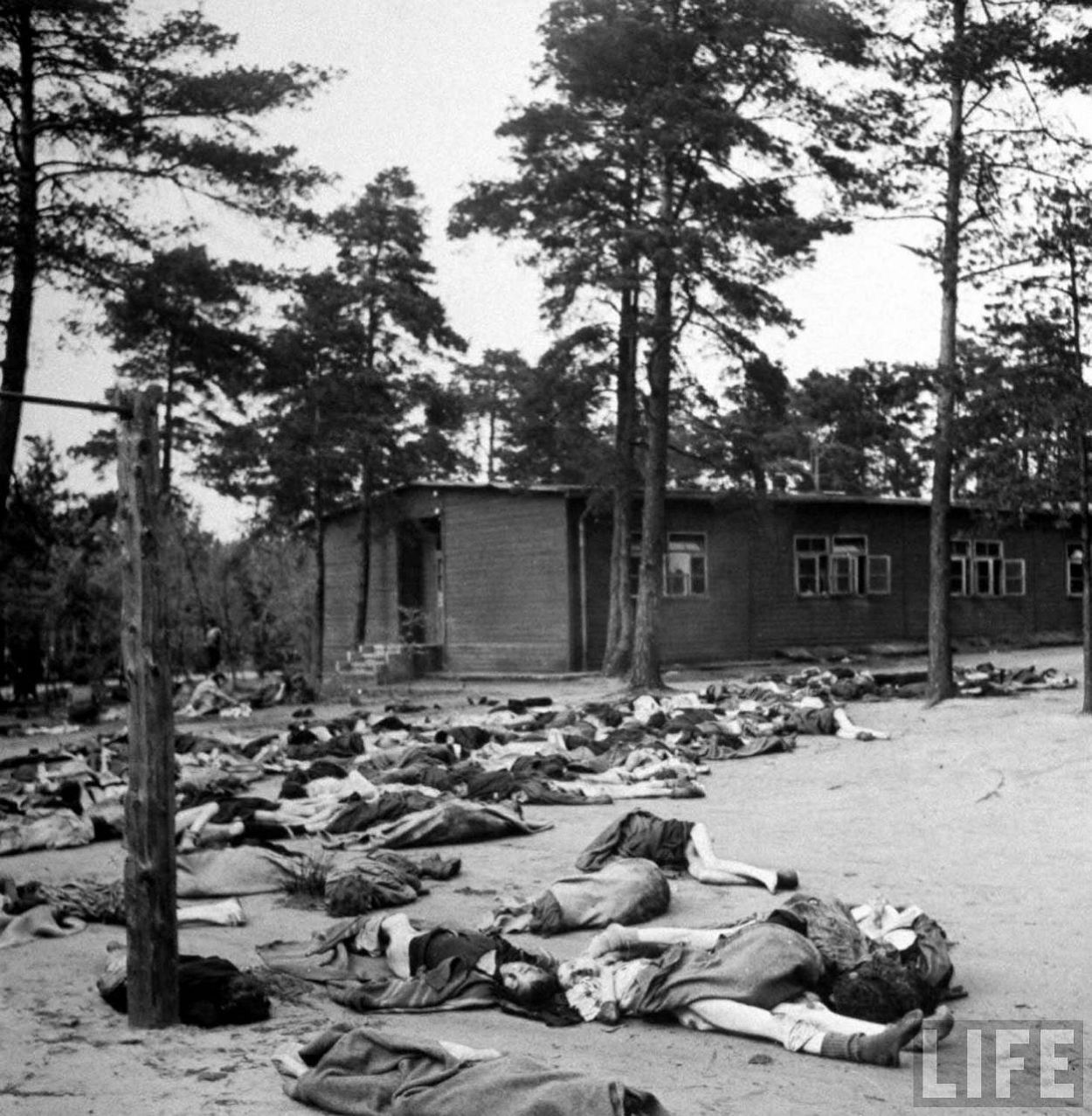 Corpses lying on ground at the Bergen-Belsen concentration camp.