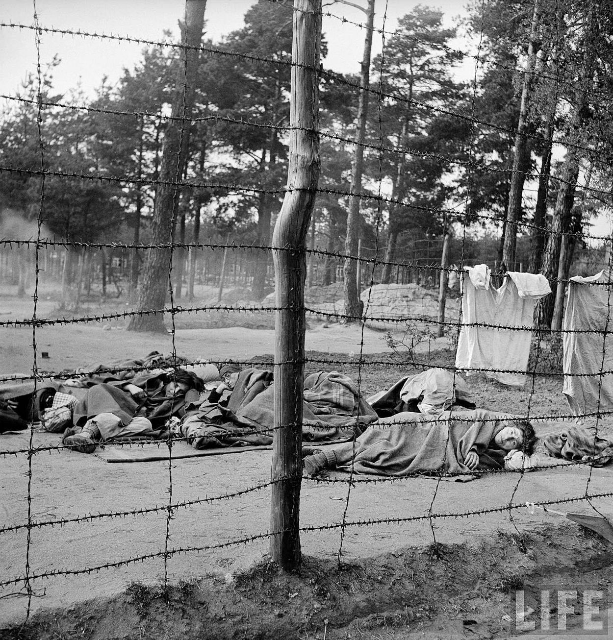 Dead and dying prisoners at the newly liberated Bergen Belsen concentration camp.