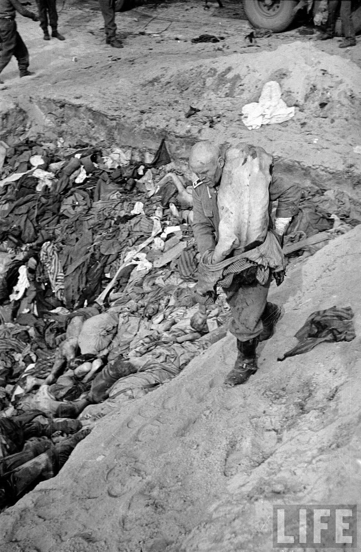 German guard being forced to put bodies of prisoners into a mass grave at the Bergen Belsen concentration camp.