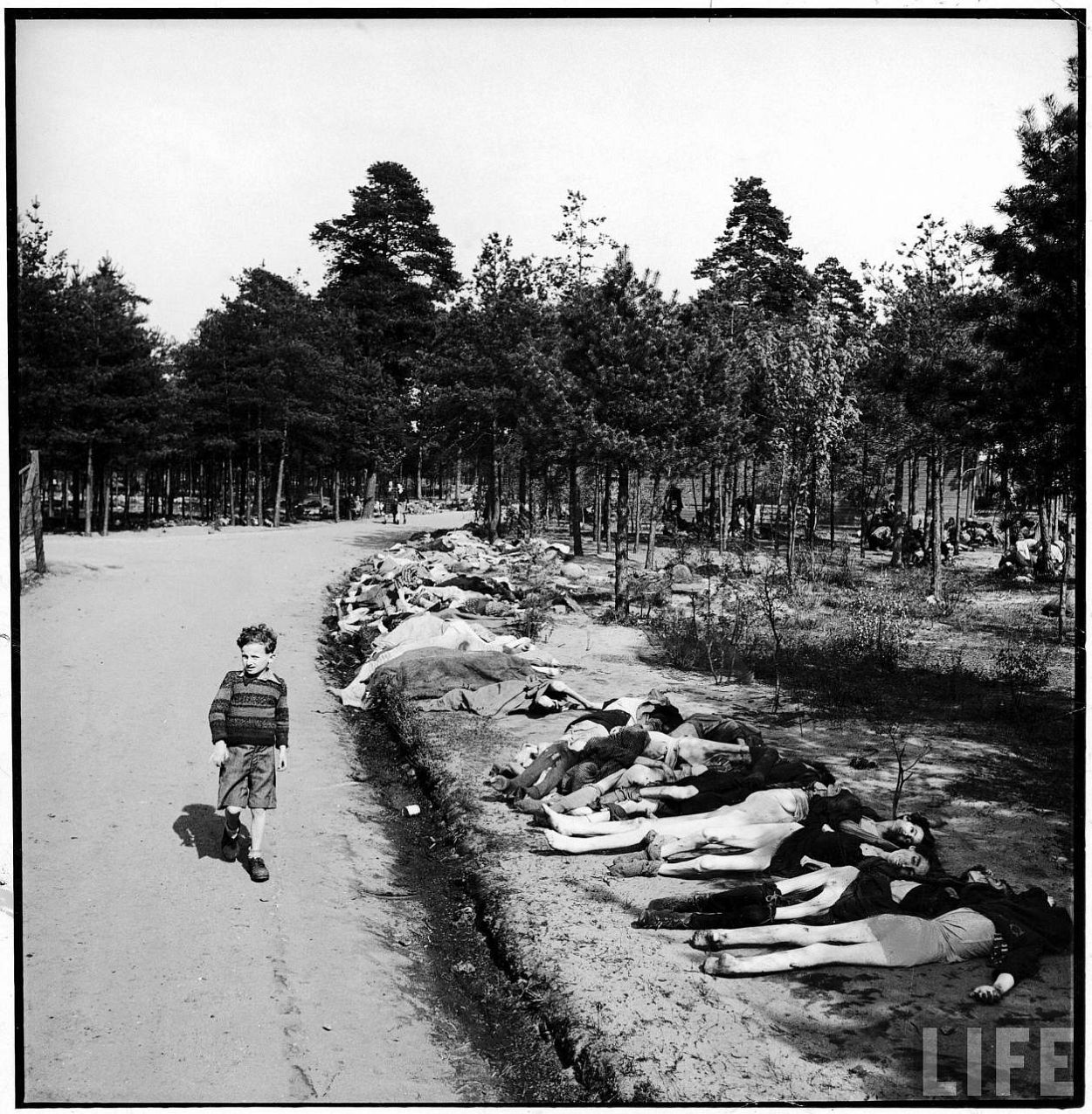 German boy walking down a dirt road lined w. the corpses of hundreds of prisoners who have died of starvation nr. Bergen xtermination camp.