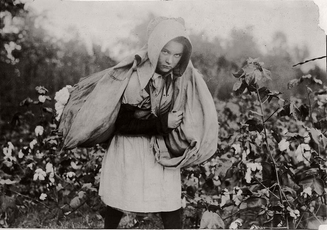 11-year-old girl picking cotton, Oklahoma, 1916