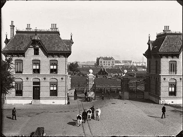 Veemarkt, 1890