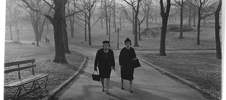 Diane Arbus: In the Park