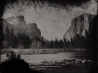Eric Overton: Wild America   Process & Preservation