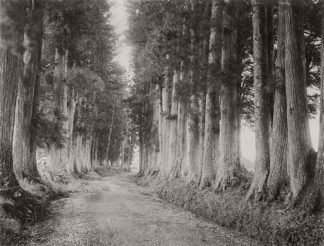Imaichi road in Nikko, ca. 1880