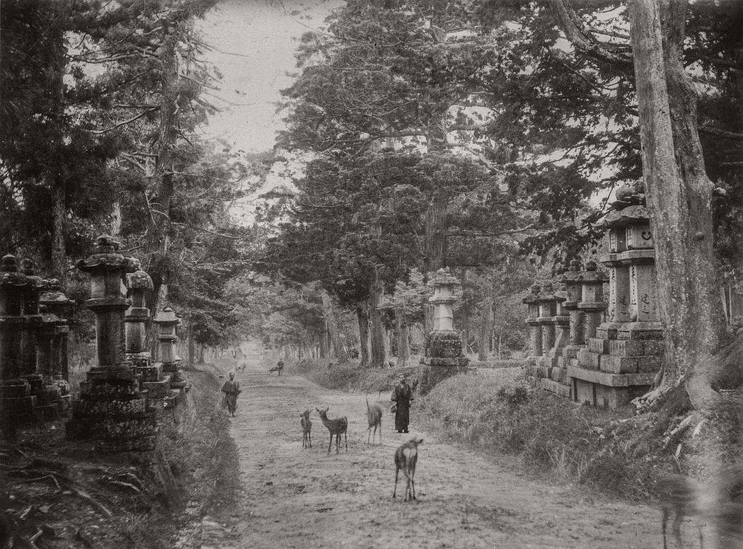 Kasuga-taisha shrine in Nara, ca. 1880
