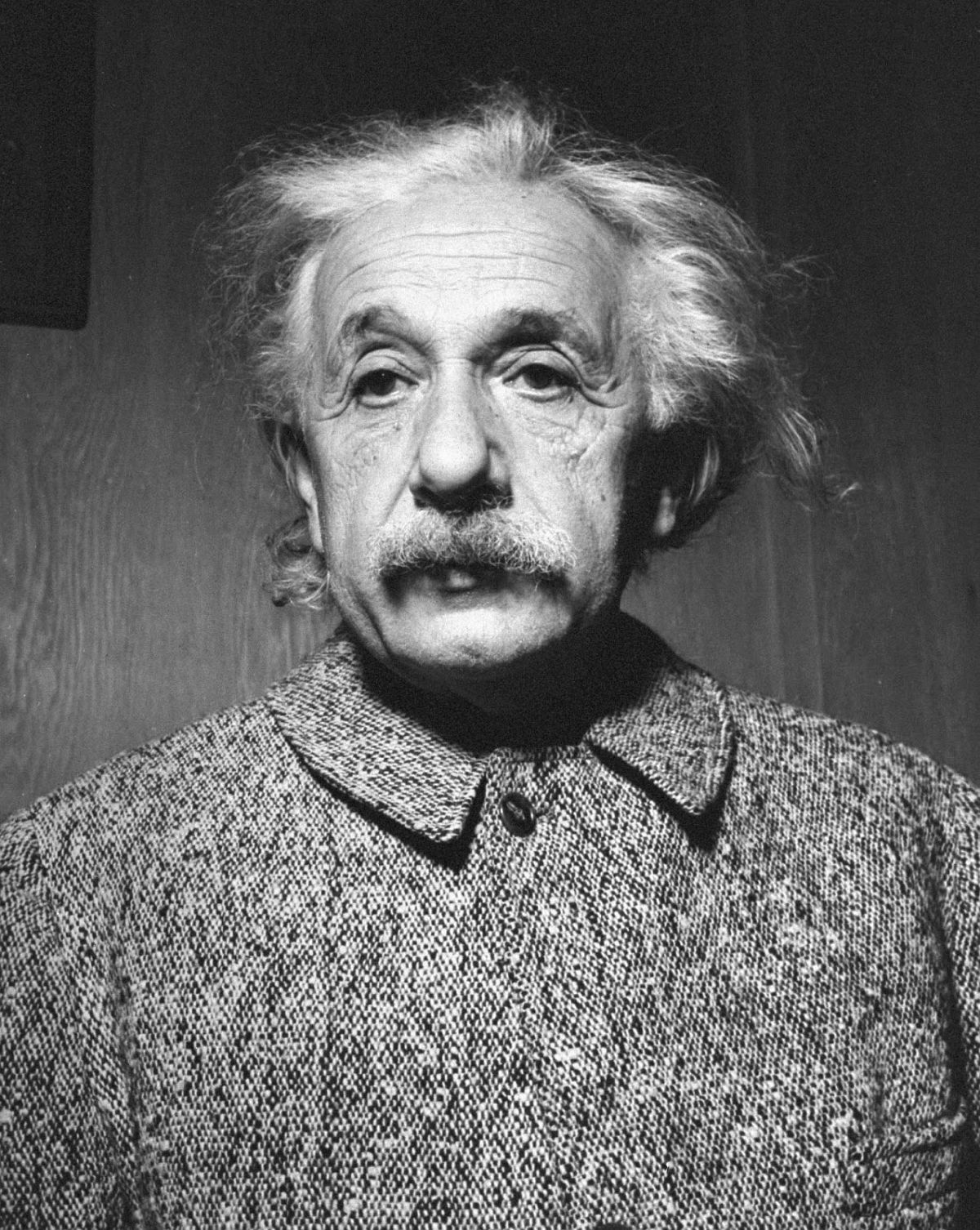 Portrait of Albert Einstein, 1947. (Al Fenn—The LIFE Images Collection/Getty Images)