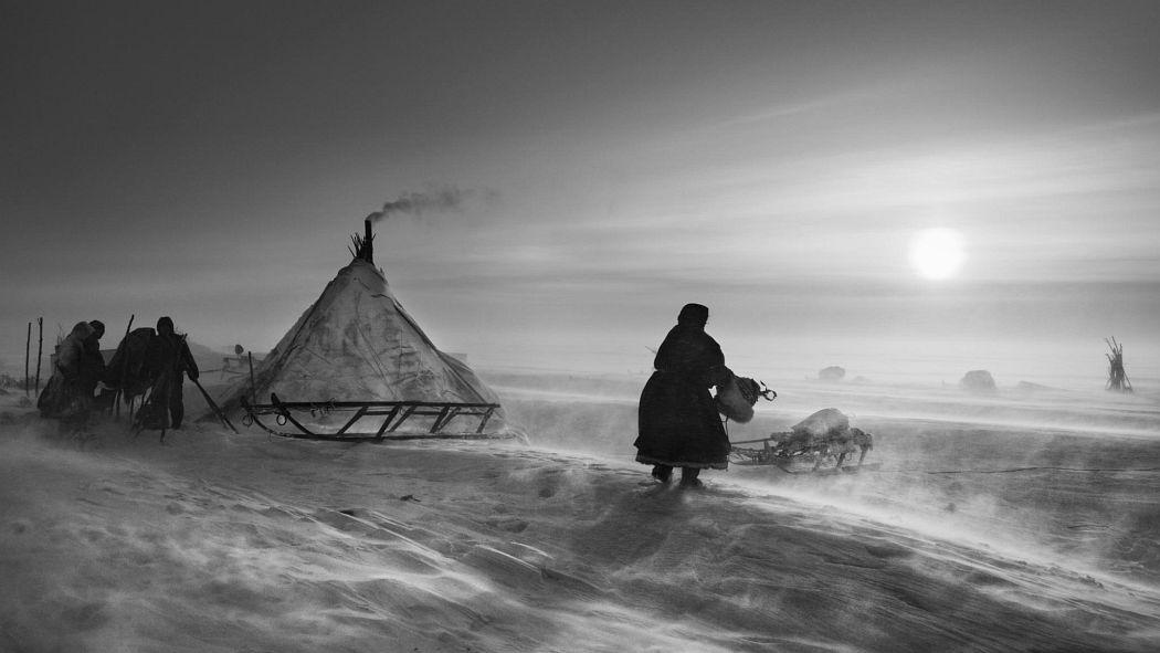 © Sebastiao Salgado: Genesis