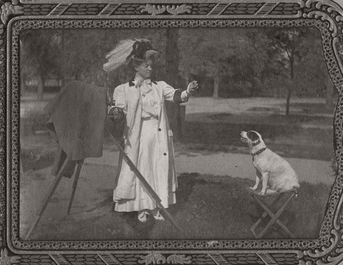 Lady photographing a dog with a view camera