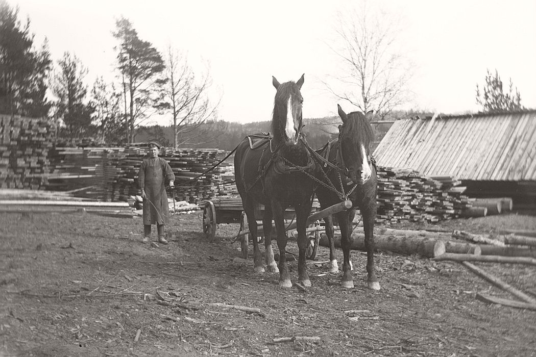 Saw horses and farmhand in 1913. This image from a temporary sawmill is probably from Fisherman home / Reverse during Frinnaryds vicarage. Oskar Jaren has namely taken several pictures from around the same time.