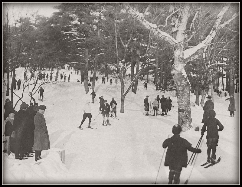 Skiing in Rockcliffe Park, ca. 1890s