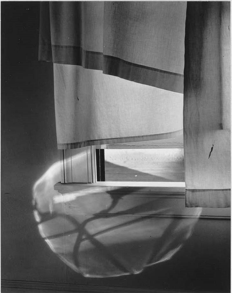 Minor White. Windowsill Daydreaming (72 N. Union Street, Rochester). 1958, printed 1960–1966. The Baltimore Museum of Art: The William G. Baker, Jr. Memorial Fund, and Roger M. Dalsheimer Photograph Acquisitions Endowment, BMA 2012.174.2. Reproduced with permission of the Minor White Archive, Princeton University Art Museum. © Trustees of Princeton University