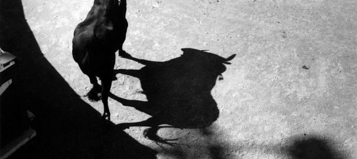Lucien Clergue: Poésie en noir et blanc