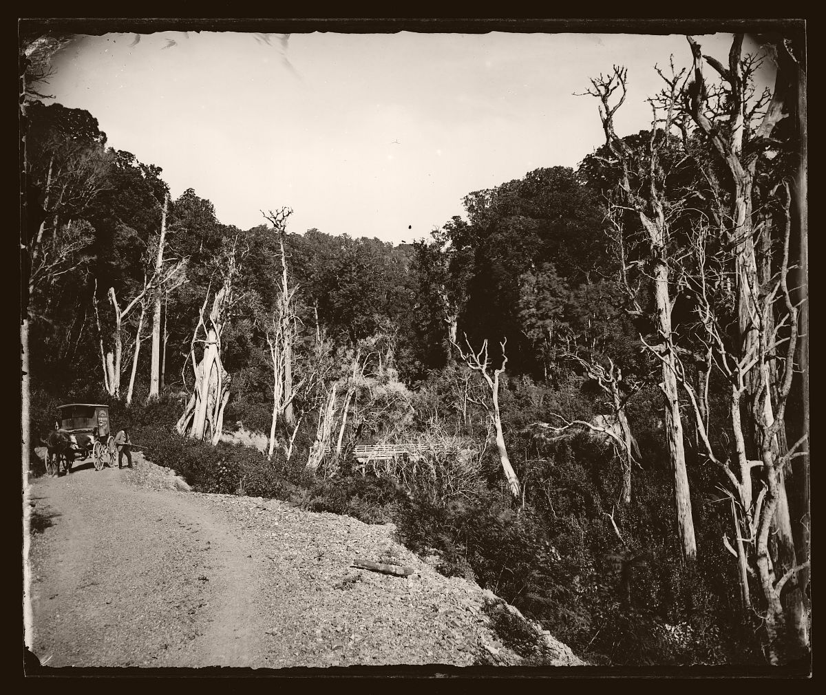 From the road, 1878.