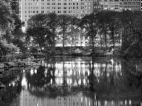 Jeff Chien-Hsing Liao: Central Park New York: 24 Solar Terms