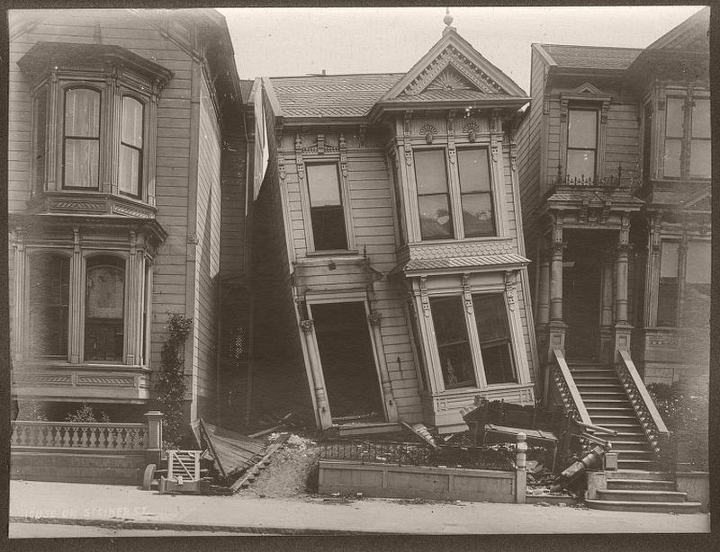 House On Steiner Street.