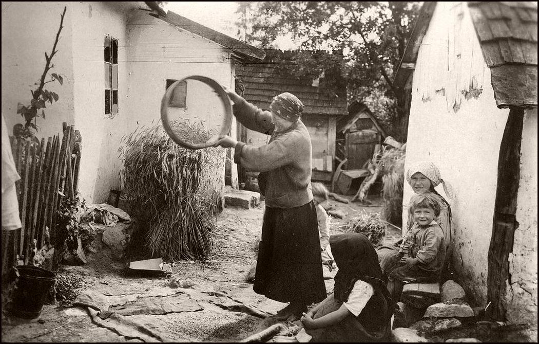 Grain winnowing