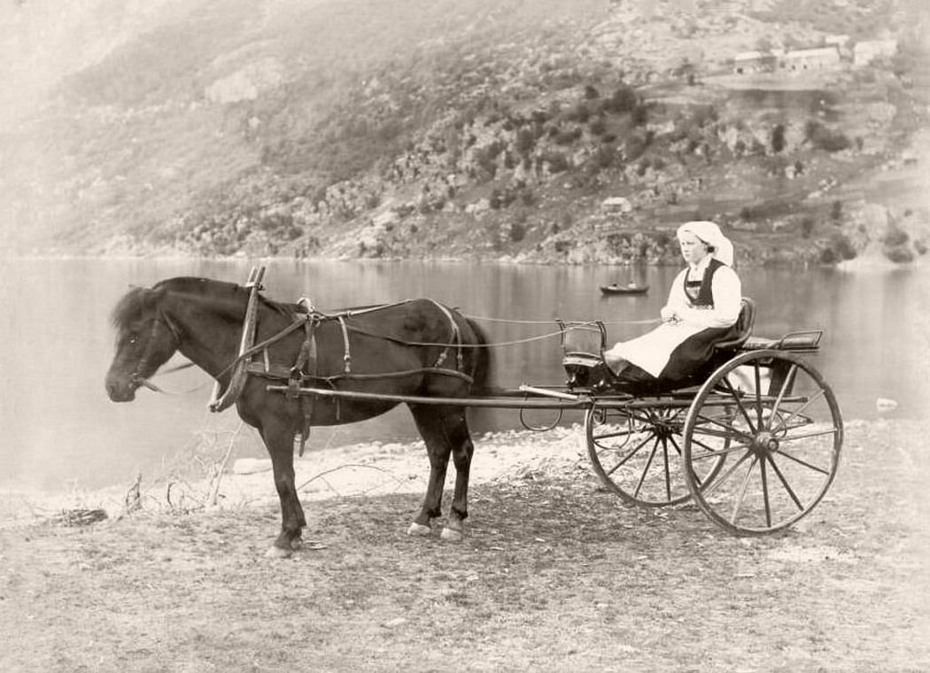 Woman on a horse-drawn carriage in the Hardangerfjord