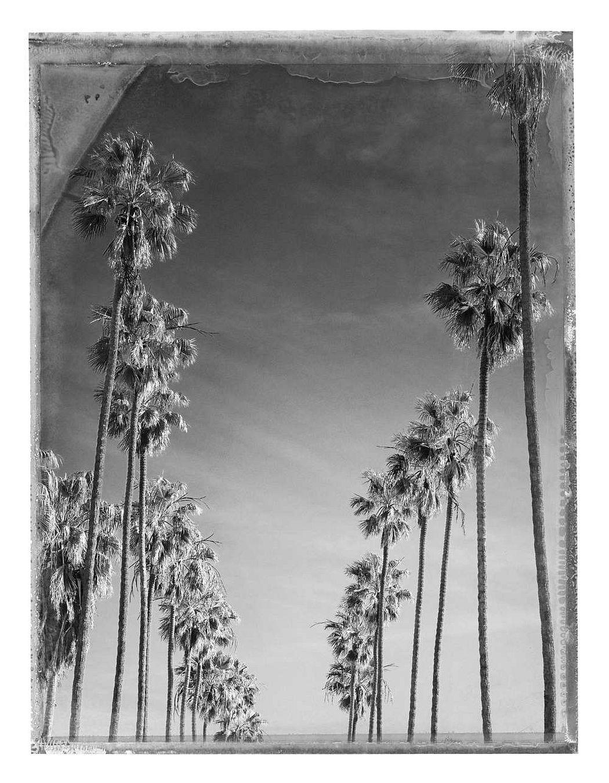 Christopher Thomas: Los Angeles, Bay Street, 2015 © Christopher Thomas
