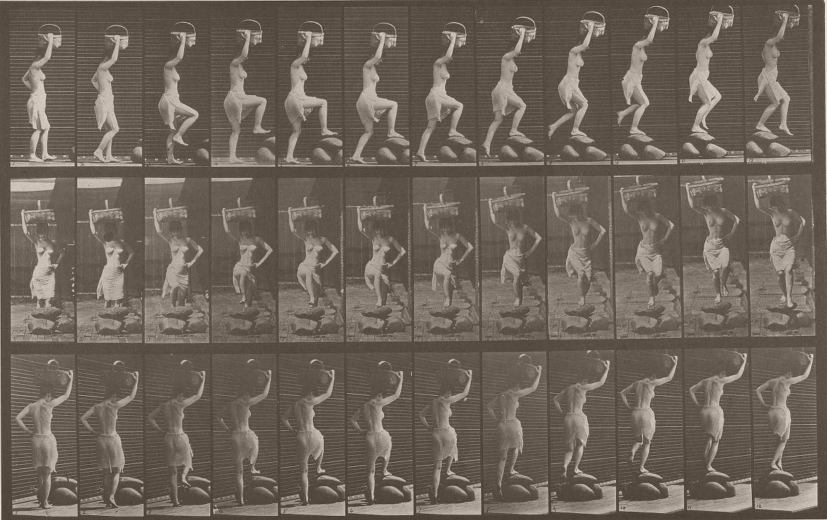 Animal Locomotion, 1887. Photo by Eadweard J. Muybridge