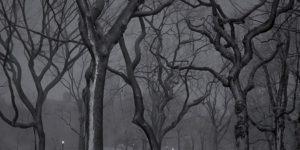 Michael Massaia: Deep in a Dream: New York City