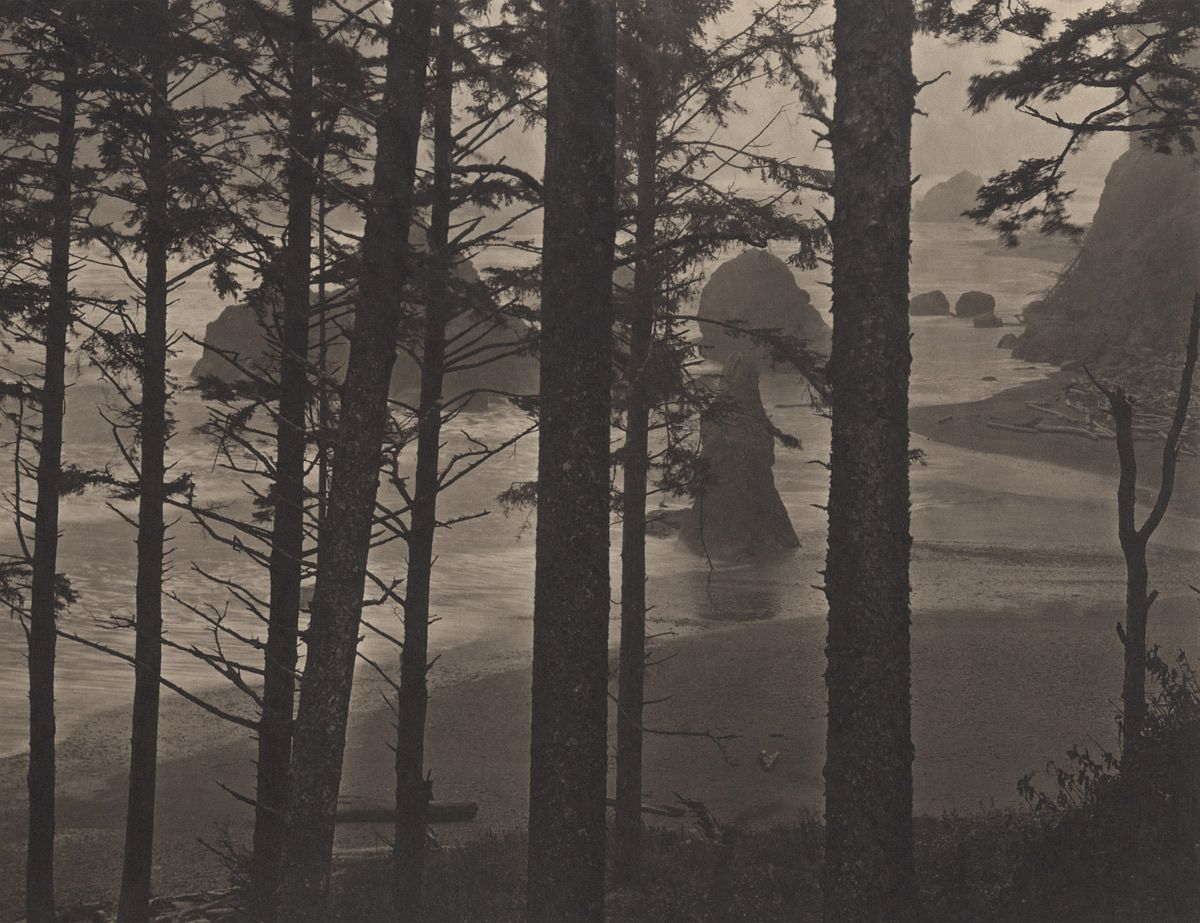 Pacific Northwest: Ruby Beach #1, 2011/2012 from Silent Respiration of Forests - Pacific Northwest