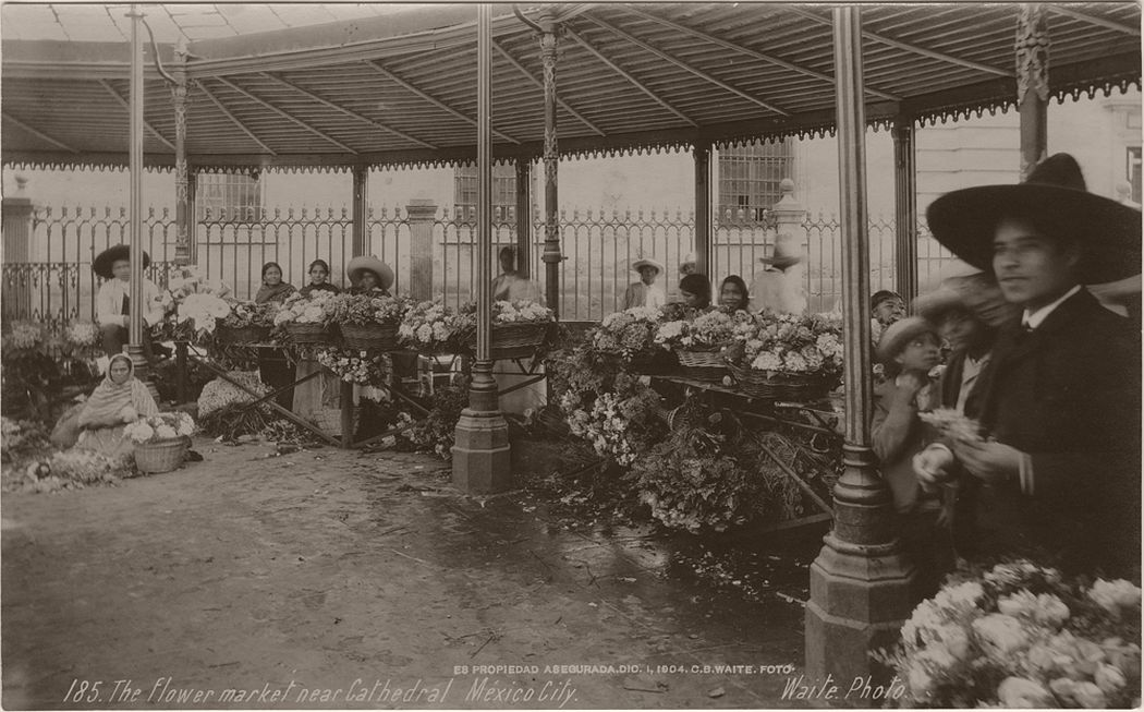 The flower market near Cathedral, Mexico City, 1904